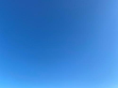 気持ちの良い天気です♪_a0120920_15330908.jpg