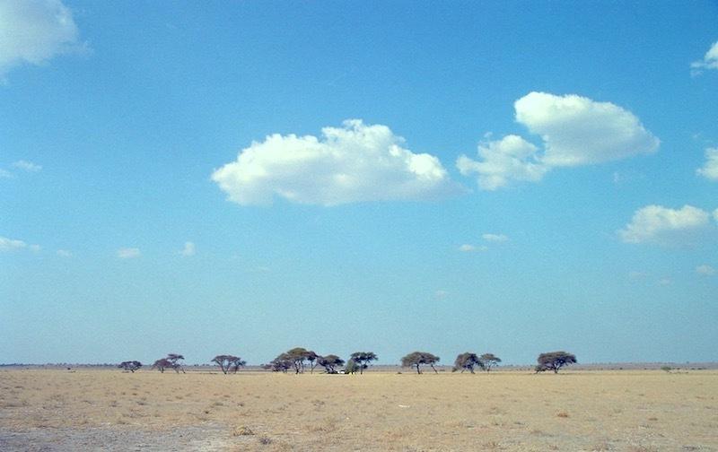 アフリカの記憶 156_d0010432_23161844.jpg