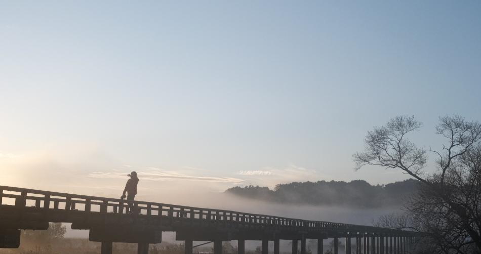 蓬莱橋 朝景 在庫から_e0243382_20203853.jpg