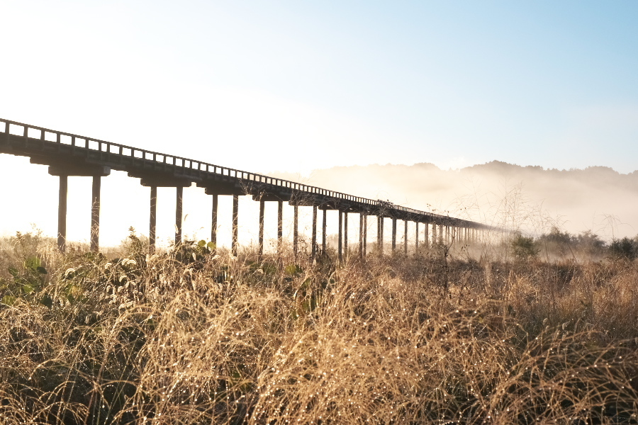 蓬莱橋 朝景 在庫から_e0243382_20211352.jpg