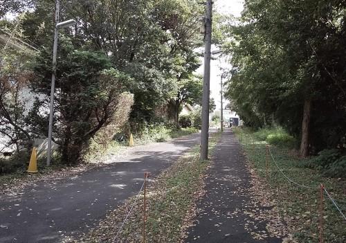 変わりやすい天気も、今日は秋空になった多摩全生園_b0255217_12524567.jpg