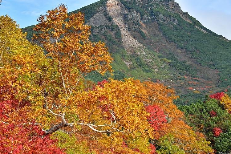 十勝岳温泉②_f0116528_20123133.jpg