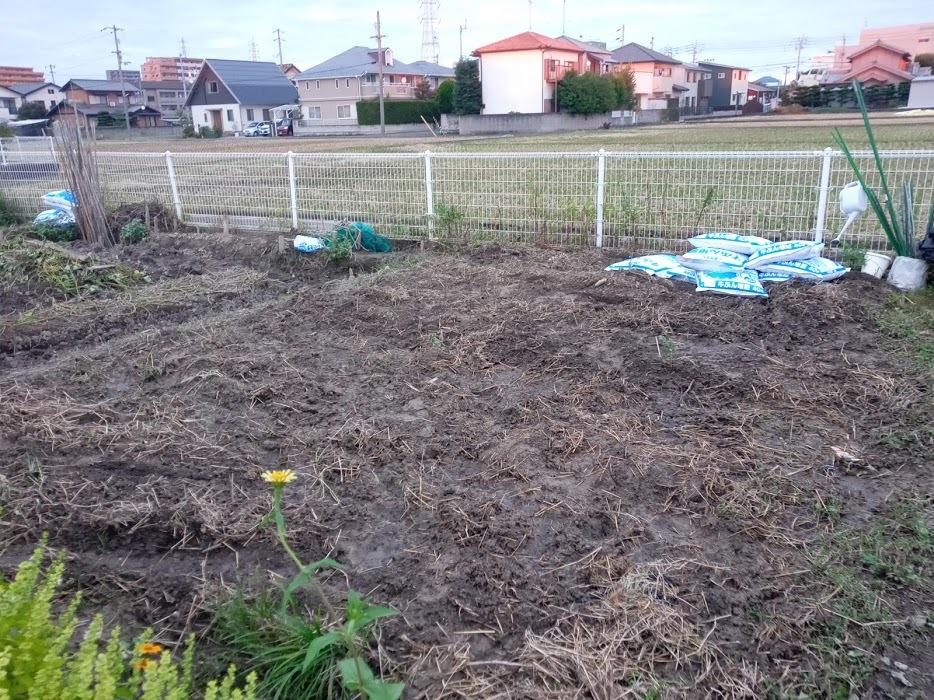 家庭菜園 約1年経過_b0211330_22061009.jpg