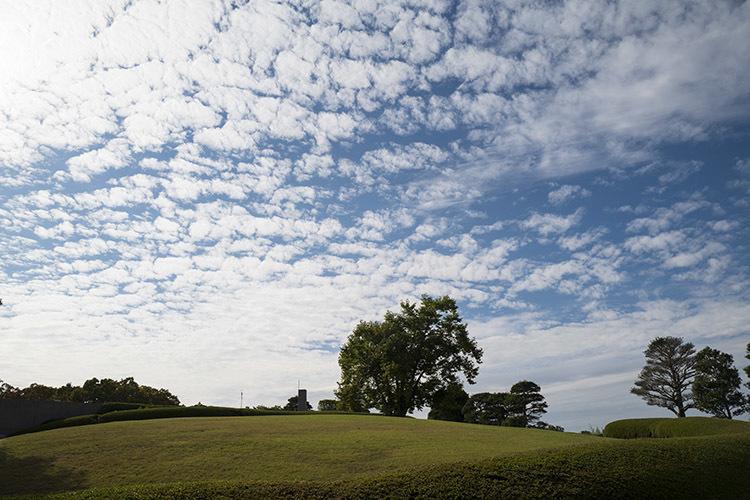 本日曇りのはずが・・・_f0049142_19011332.jpg