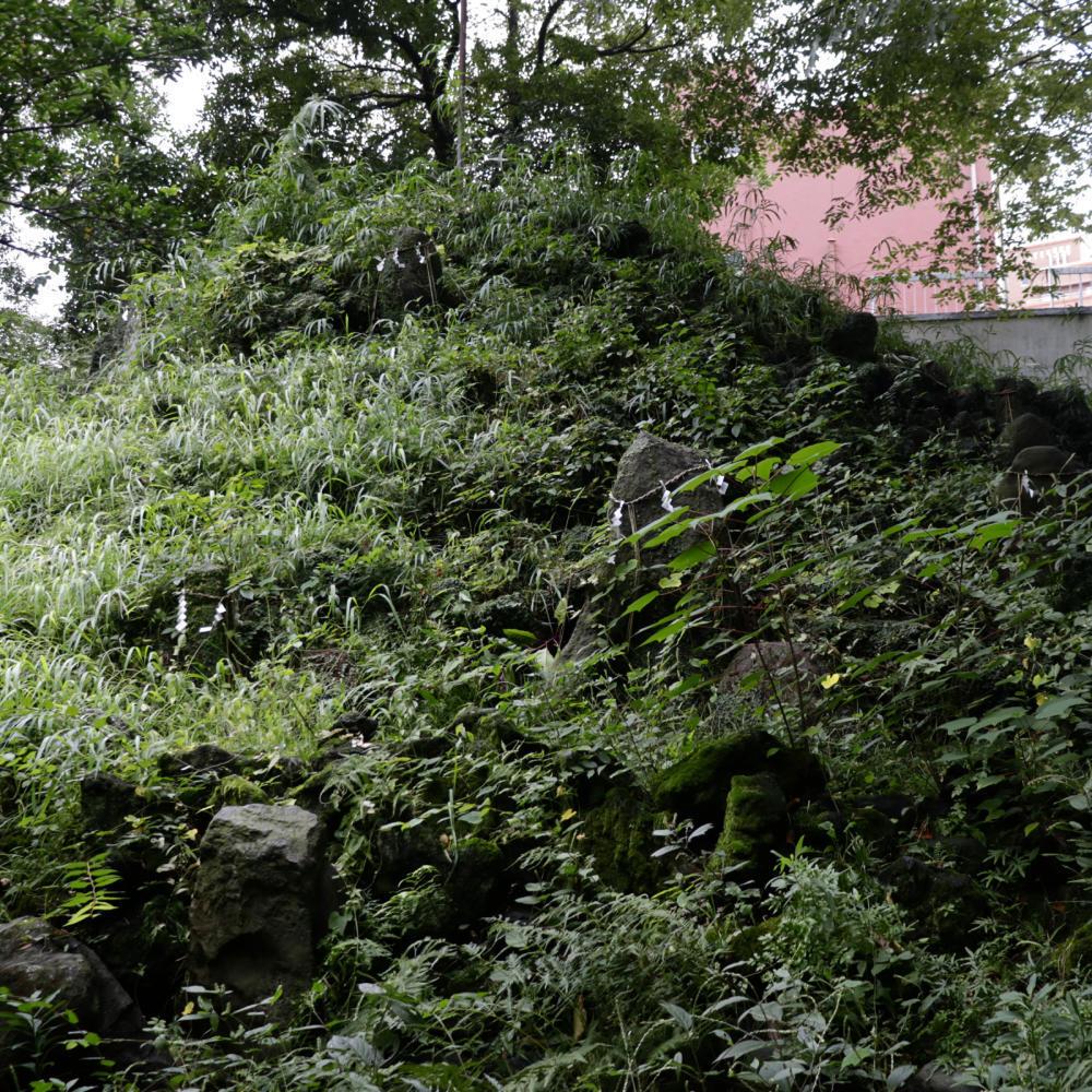 小野照崎神社と下谷坂本富士_c0060143_19013551.jpg