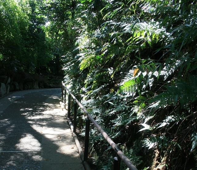 散歩、実篤公園まで_e0082045_16234499.jpg