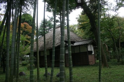 散歩、徳富蘆花公園へ_e0082045_16492136.jpg