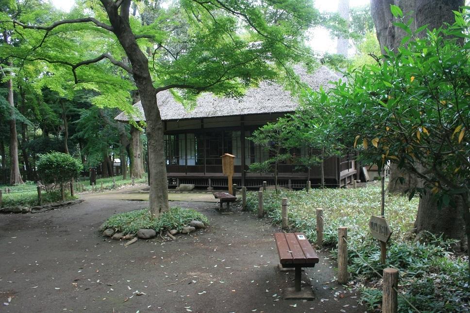 散歩、徳富蘆花公園へ_e0082045_16591756.jpg