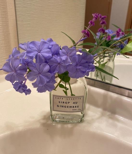Gardening  手入れした後に庭のお花を飾って_a0165160_08054651.jpg