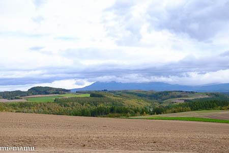 深まる秋の畑と山~10月の美瑛_d0340565_20443082.jpg