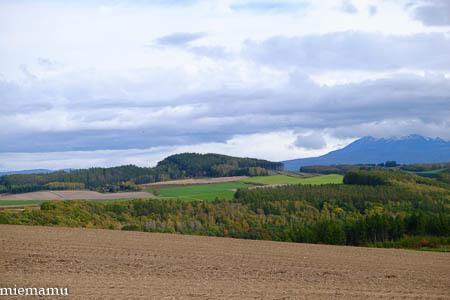深まる秋の畑と山~10月の美瑛_d0340565_20443699.jpg