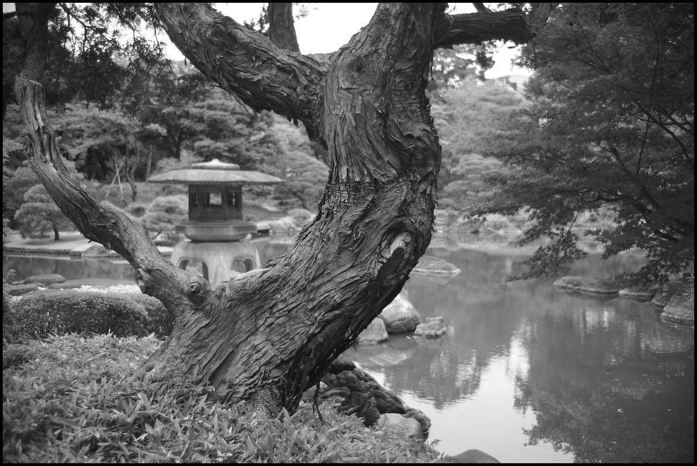 旧古河庭園 -24_b0340572_21512487.jpg