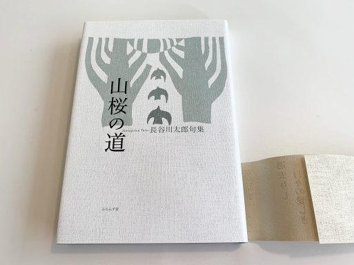 田中裕明の句の取り合わせの新しさに感銘を受けて作った句もある、、、_f0071480_18274814.jpg