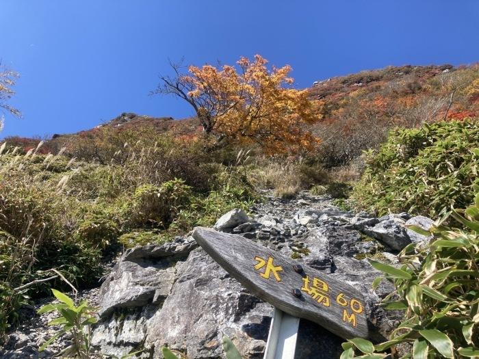 紅葉の三嶺〜剣山縦走_a0136013_11115956.jpg
