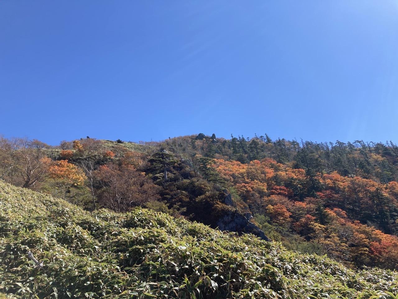 紅葉の三嶺〜剣山縦走_a0136013_11122677.jpg