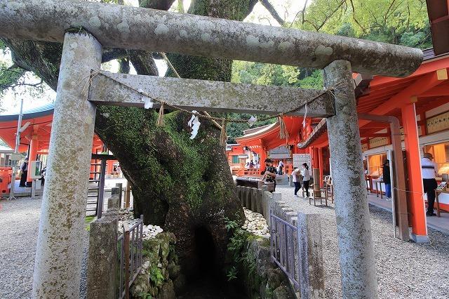 熊野那智大社参詣(撮影:10月11日)_e0321325_15510101.jpg