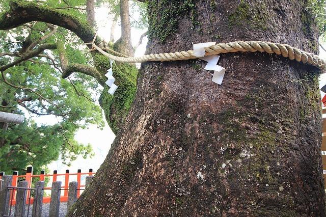 熊野那智大社参詣(撮影:10月11日)_e0321325_15545593.jpg