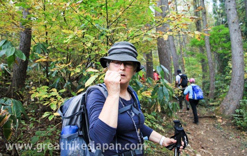 トレイル歩きで伝える日本の里山文化。人を引き付ける信越トレイルの魅力。_d0112928_00485105.jpg