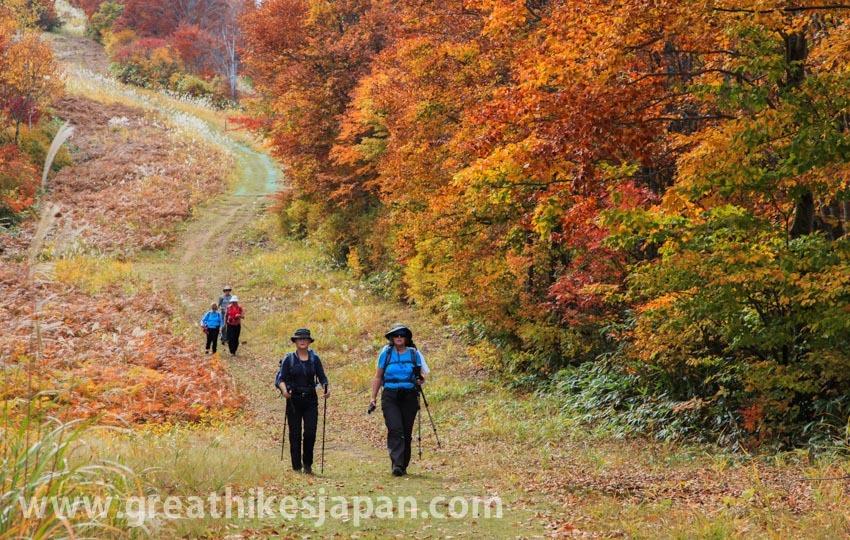 トレイル歩きで伝える日本の里山文化。人を引き付ける信越トレイルの魅力。_d0112928_01105572.jpg