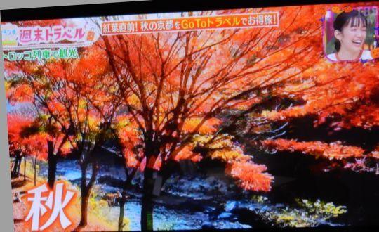 '20,10,17(土)テレビで妄想旅行!_f0060461_11110045.jpg