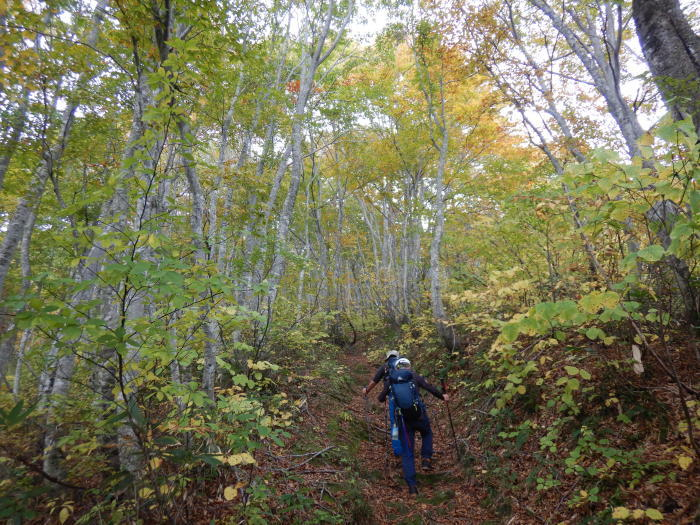 長井葉山・白兎コースから昭和堰の周回 ~ 2020年10月14日_f0170180_12113303.jpg