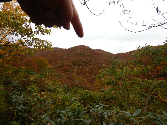 長井葉山・白兎コースから昭和堰の周回 ~ 2020年10月14日_f0170180_12361438.jpg