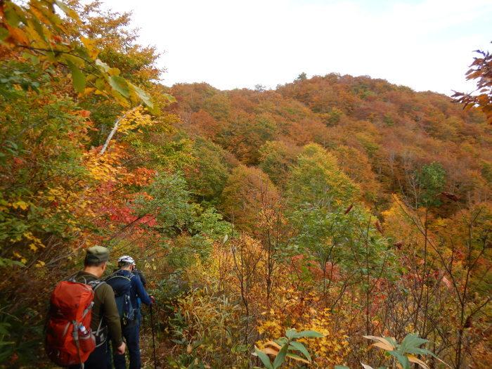 長井葉山・白兎コースから昭和堰の周回 ~ 2020年10月14日_f0170180_12395036.jpg