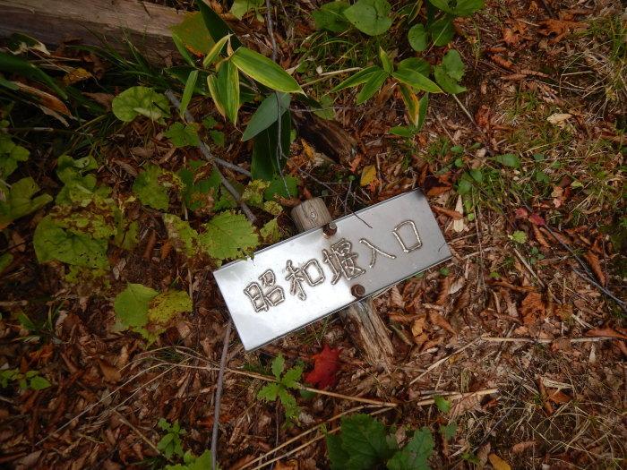 長井葉山・白兎コースから昭和堰の周回 ~ 2020年10月14日_f0170180_12405012.jpg