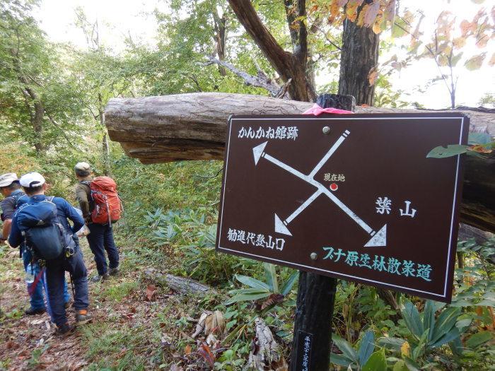 長井葉山・白兎コースから昭和堰の周回 ~ 2020年10月14日_f0170180_12474625.jpg