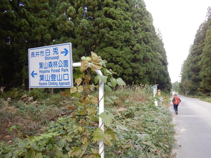 長井葉山・白兎コースから昭和堰の周回 ~ 2020年10月14日_f0170180_12505137.jpg