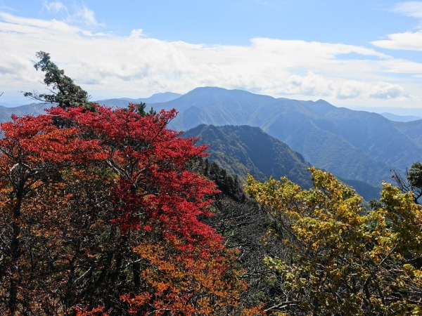 稲村ケ岳で秋を感じて  SOTA#JA/NR-004_f0073587_17575931.jpg