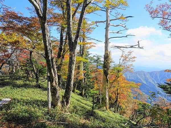稲村ケ岳で秋を感じて  SOTA#JA/NR-004_f0073587_17581526.jpg