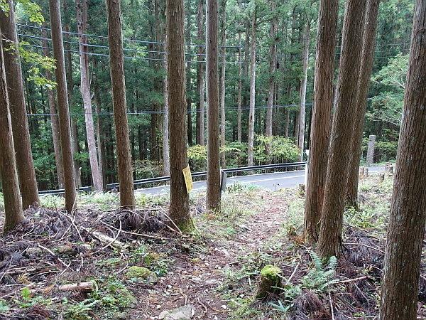 稲村ケ岳で秋を感じて  SOTA#JA/NR-004_f0073587_22021785.jpg