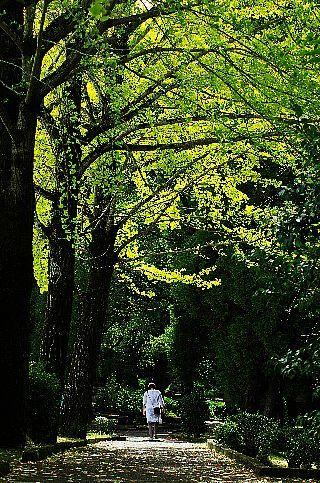 公園の秋_f0360801_19022167.jpg