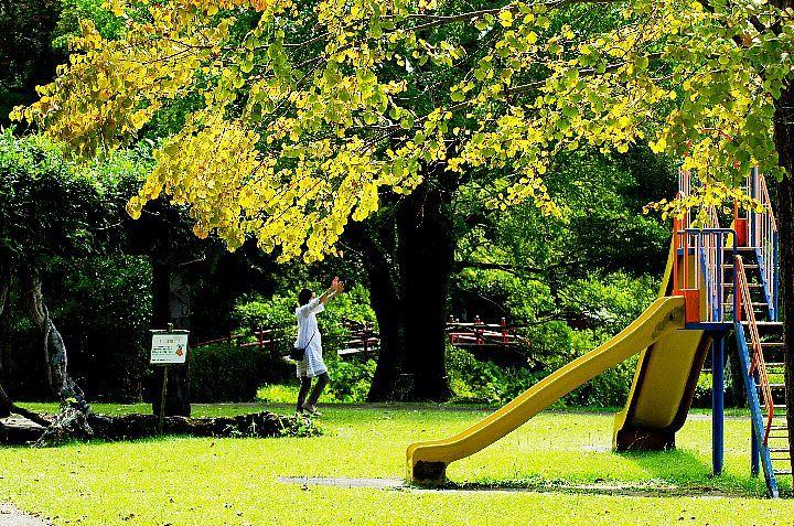 公園の秋_f0360801_19030724.jpg