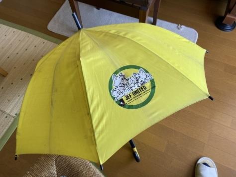 20年以上使った傘_e0148909_10182281.jpeg