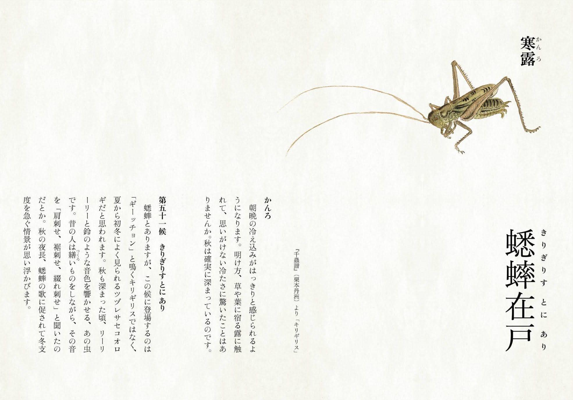 ユキムシの季節_c0025115_21424753.jpg