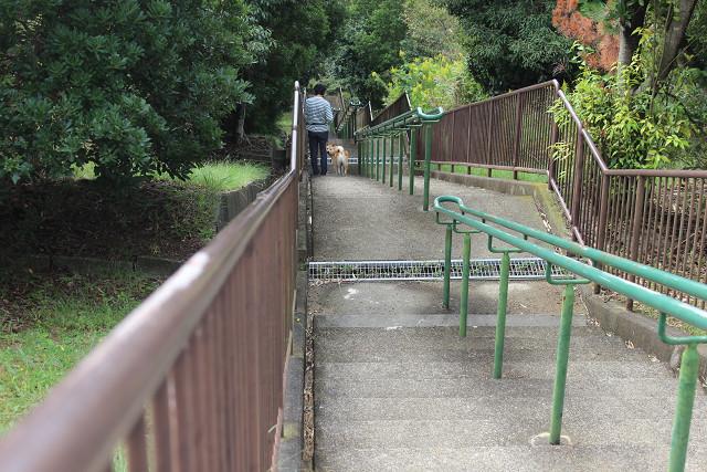 また階段下りるの~_e0371017_23340124.jpg