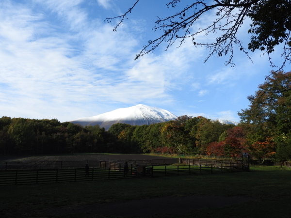 浅間山初冠雪&初霜(2020年10月18日)_b0174425_17490494.jpg