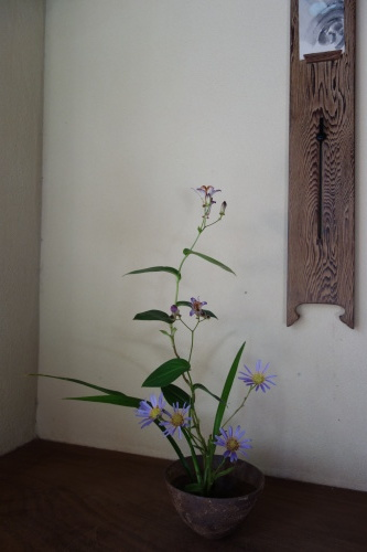 蓋物の器が楽しい季節_a0197730_00205797.jpg