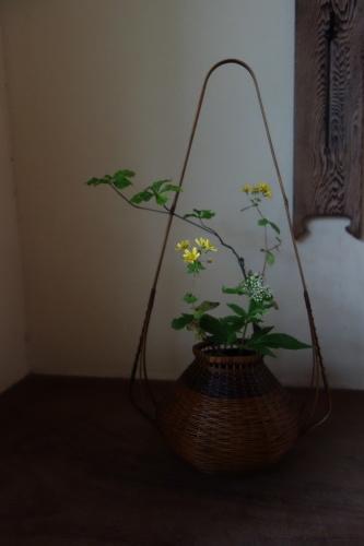 蓋物の器が楽しい季節_a0197730_00214427.jpg