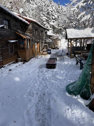 【追記あり】 初雪降りました_c0369344_20040249.jpeg