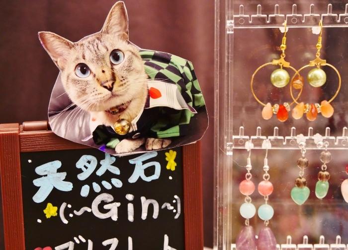 10月のポぽロハス・マーケット  2020-10-20 00:000_b0093754_22391933.jpg