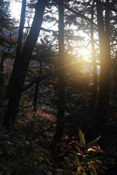 爺ヶ岳 201018 初雪_e0338862_15250398.jpg