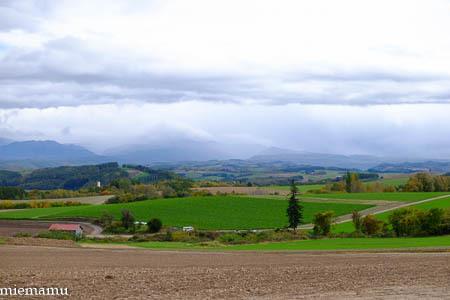 深まる秋の畑と山々VOL.2~10月の美瑛_d0340565_20271321.jpg