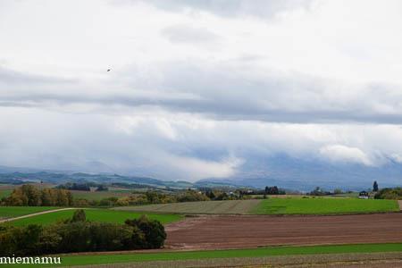 深まる秋の畑と山々VOL.2~10月の美瑛_d0340565_20273305.jpg
