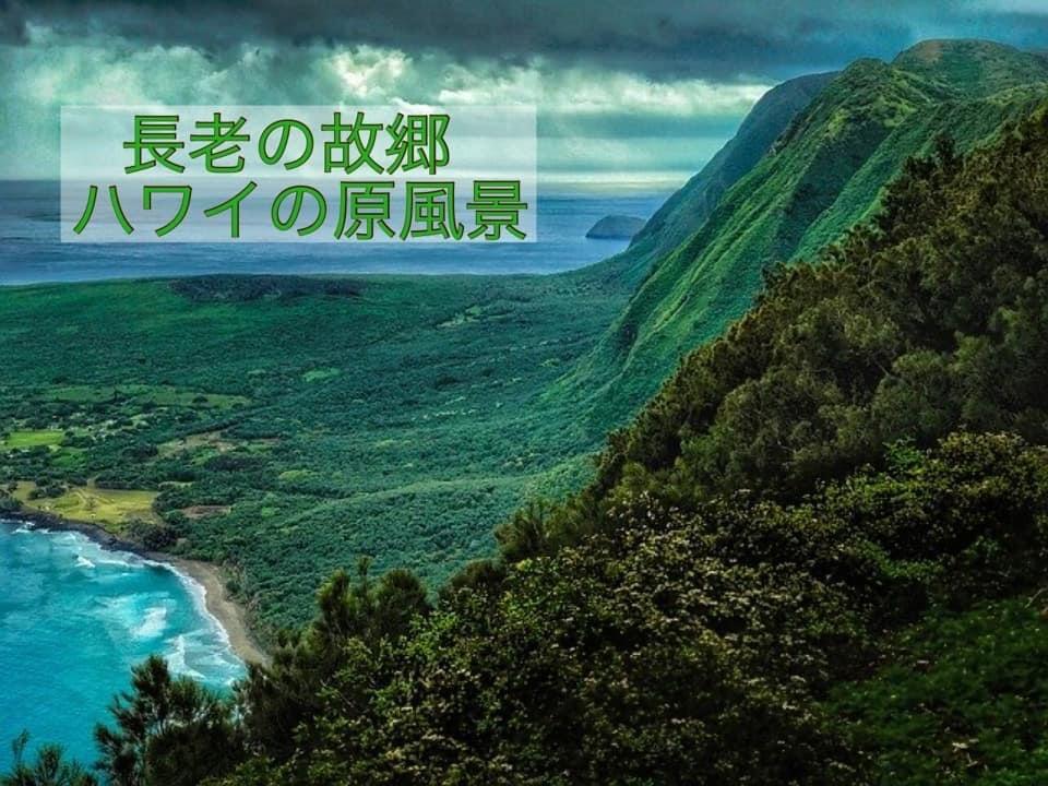 Happy Natural✖️さくら住建 三世代マルシェagainスペシャル_e0220065_10185060.jpeg