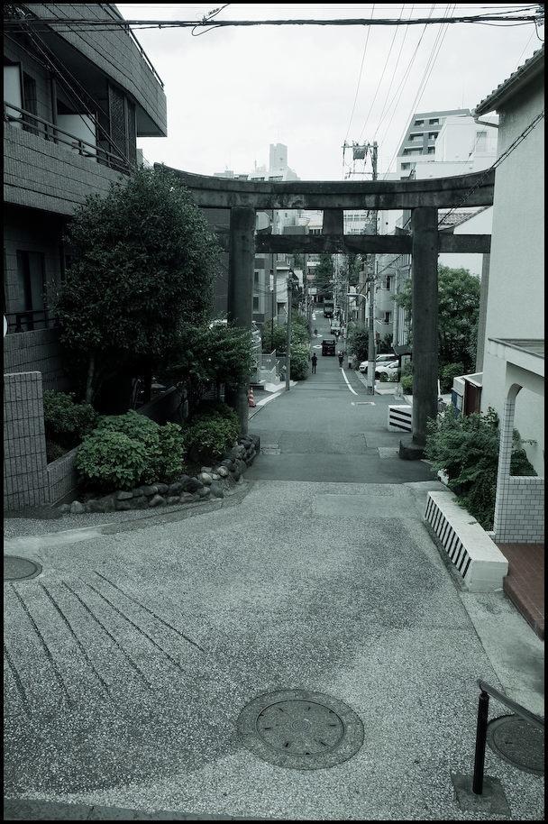 小石川・白山神社 -6_b0340572_21255850.jpg