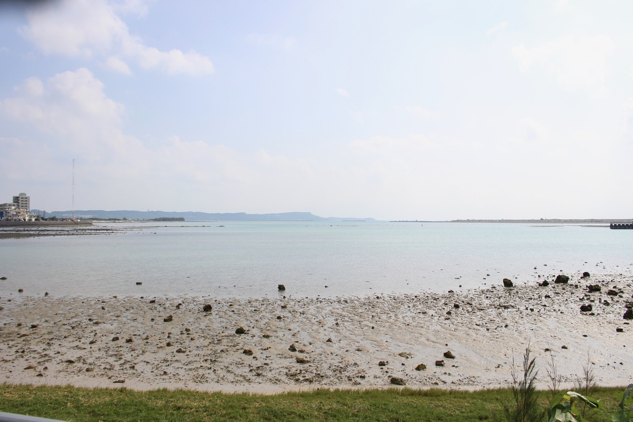 ネコクラブABC合同-06◆秋の干潟で収穫まつり(10/17)沖縄随一の干潟、泡瀬干潟で丸一日潮干狩りにチャレンジ。貝もカニもいっぱいで、お腹いっぱいになりました!_d0363878_00101317.jpeg