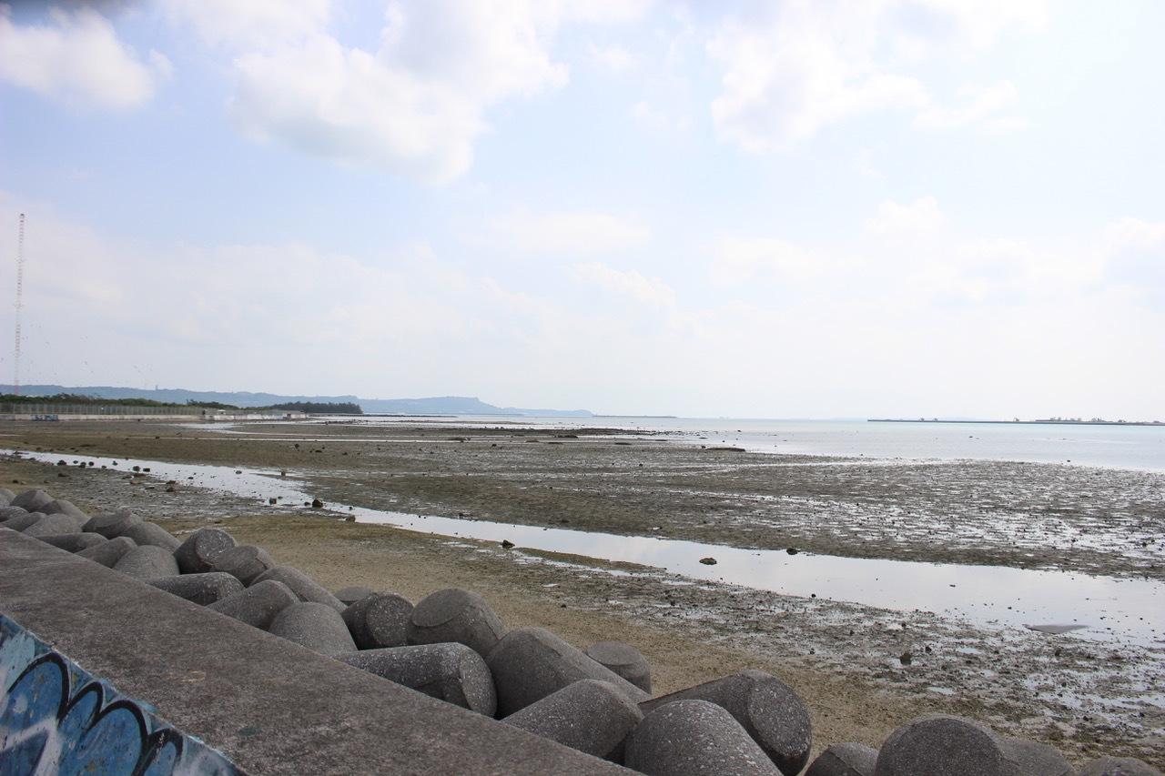 ネコクラブABC合同-06◆秋の干潟で収穫まつり(10/17)沖縄随一の干潟、泡瀬干潟で丸一日潮干狩りにチャレンジ。貝もカニもいっぱいで、お腹いっぱいになりました!_d0363878_00101484.jpeg